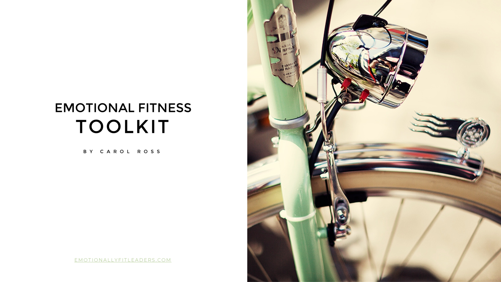 Emotional Fitness Toolkit 2020